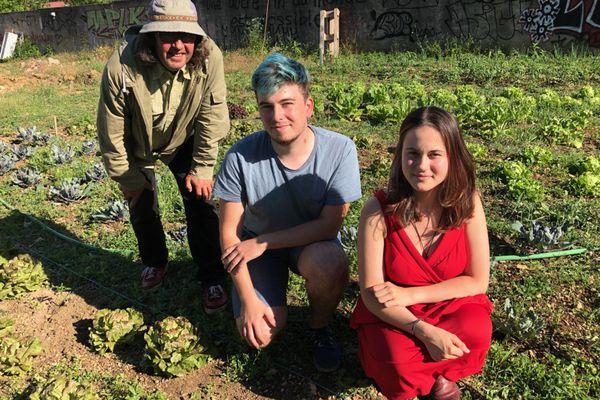 De gauche à droite : Eloi Delaporte, Alinoë Gentaz-Bourchanin et Aude Tonnin, au milieu des salades.